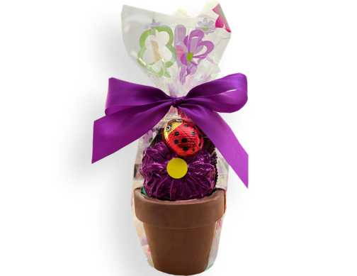 Chocolate Flower Pot (Medium)