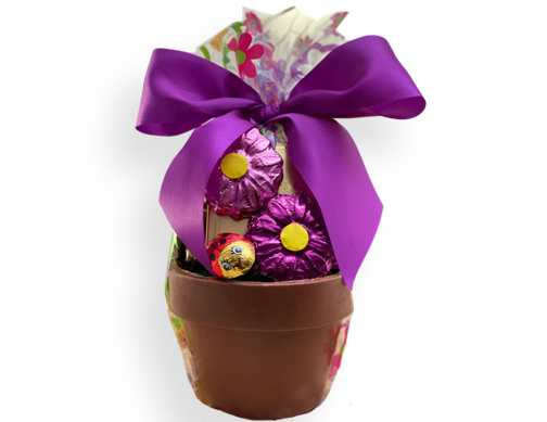 Chocolate Flower Pot (Large)