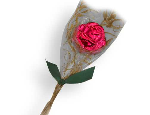 Dark Chocolate Long-Stemmed Rose