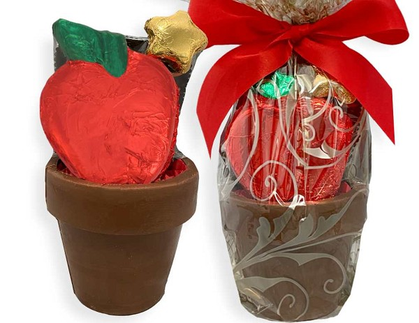A 3.5 inch Chocolate Flower Pot filled with four pieces of Filled Chocolates, a foil wrapped Chocolate App;e and a foil wrapped Chocolate Flower. All wrapped in cellophane and tied with a bow.