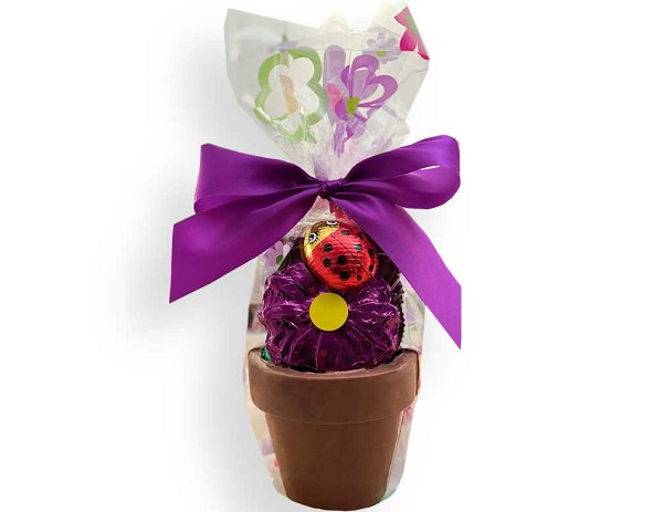 A pretty chocolate flower and lady bug with four delicious homemade chocolates fill up this adorable chocolate flower pot.