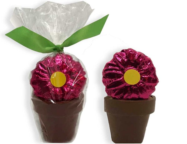 A pretty chocolate flower, tasty jellybeans and a chocolate truffle fill up this adorable chocolate flower pot.